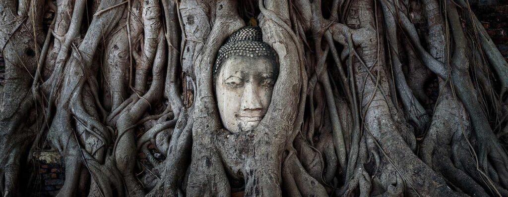 illumination-buddha